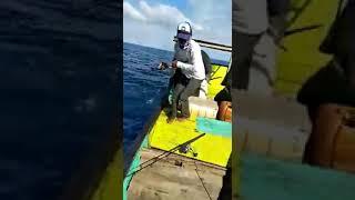Mancing ikan besar di laut Aceh pidie