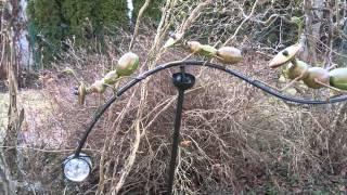 Windspiel grüne Ameisen