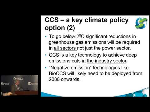 The Future of Carbon Capture, Utilization, and Storage (CCUS): Status, Issues, Needs