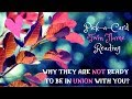 WHY THEY AREN'T READY FOR UNION ~ PICK-A-CARD READING | TWIN FLAME