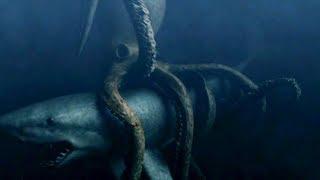 Версус! Осьминог против Акулы! Осьминог атакует дайвера