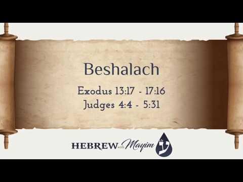 16 Beshalach, Aliyah 4 - Learn Biblical Hebrew