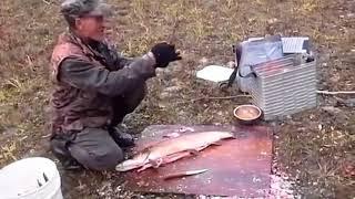 Супер приколы на рыбалке