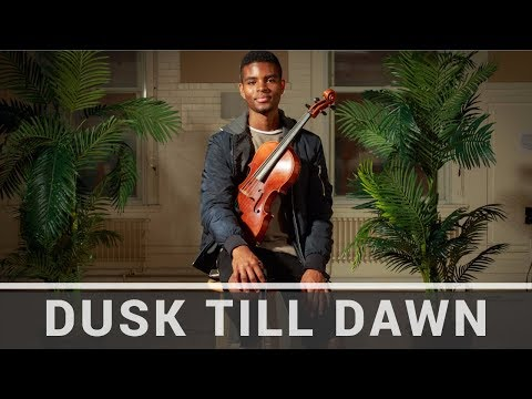 ZAYN | Dusk Till Dawn (feat. Sia) | Jeremy Green | Viola Cover