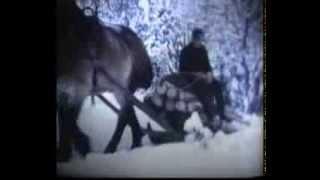 Bondelivet i Gåsevål 1983.Sven Jansson kör virke i skogen