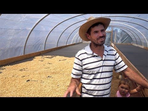Relationship Coffee: Beyond Buzzwords. Honduras w/ Damian Chavez + Benjamin Paz | Real Chris Baca