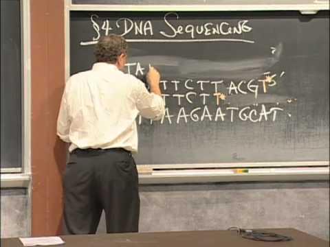 Agarose Gel Electrophoresis, DNA Sequencing, PCR, Excerpt 1 | MIT 7.01SC Fundamentals of Biology