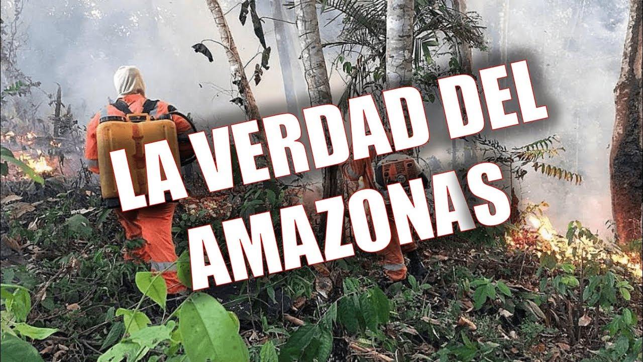 Todo  lo que debes saber sobre el AMAZONAS - LA VERDAD