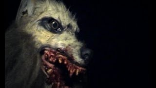 DENSE FEAR 2 Bloodline (clips from movie)
