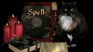 witch shops online