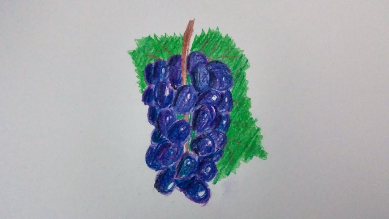 How To Draw Grapes Speed Drawing
