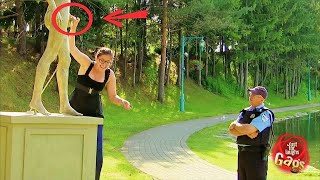 Best Just For Laughs Gags Compilation / Part 38