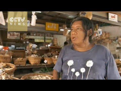 Myanmar economy: bright future after sanctions lifted