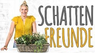 SCHATTEN FREUNDE - SOMMERBLUMEN FÜR DEN SCHATTEN - DIY