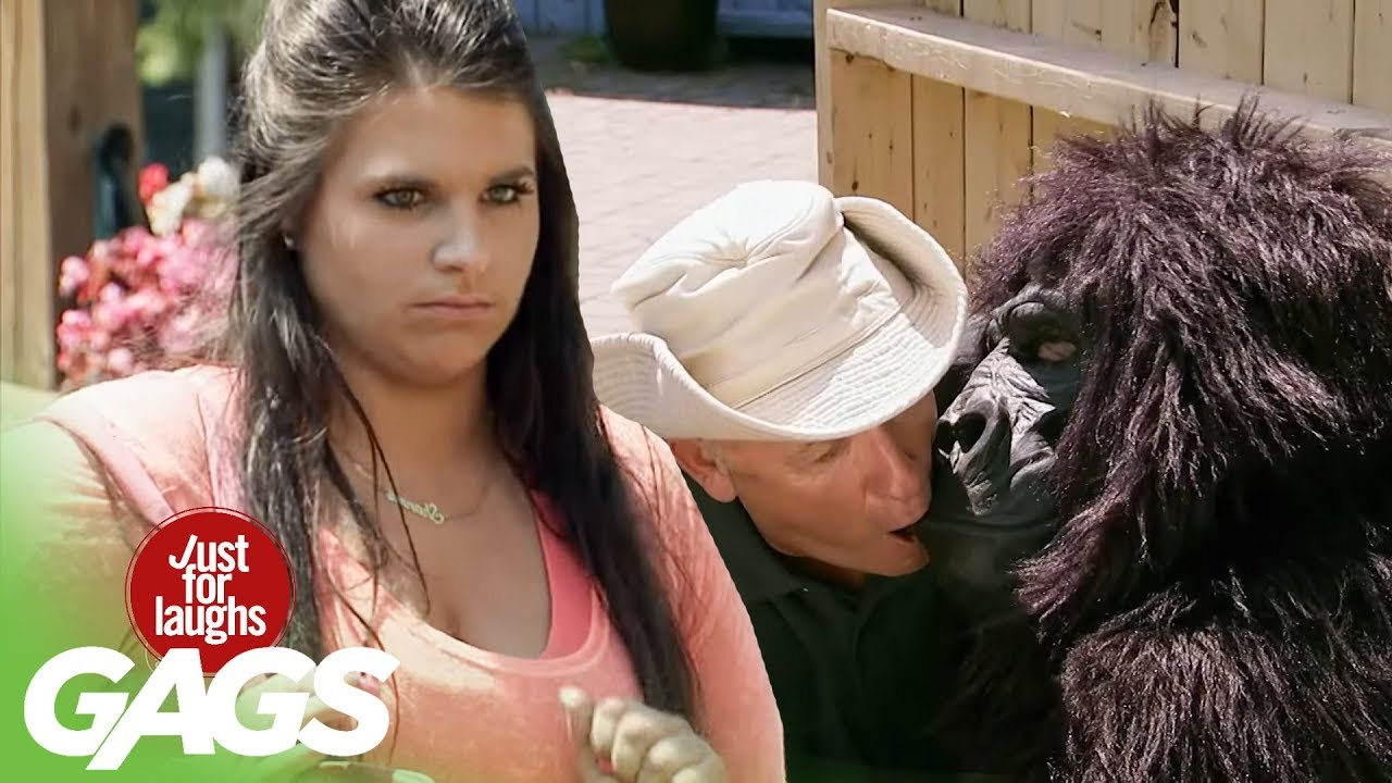 Zookeeper Caught MAKING OUT with Gorilla