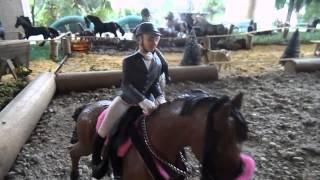 Nouveaux C.E ( Cabal de Ramounelle & Ranch des Chevaux Sauvages )
