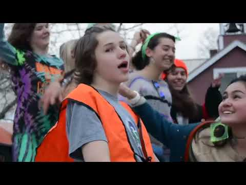 The Mountain school: Fall 2017