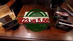 223 vs 5.56  Ammo (prices & specs)