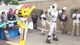 2010年5月26日、阪神-西武戦試合前、Let's Go トラッキーオーディション...