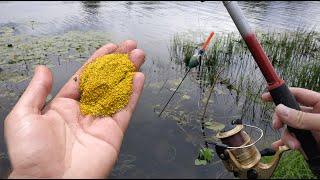Ловит всю рыбу Запрещенная прикормка