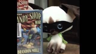 The 5 Book Care Rules starring Skippy Jon Jones