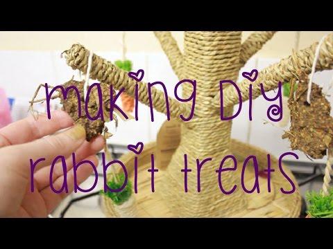 Making DIY Rabbit Treats Vlog
