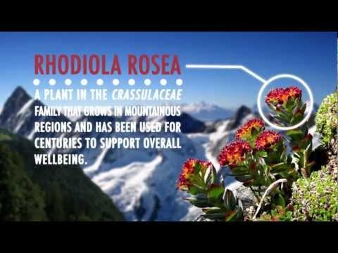 Pure Health Naturally Rhodiola Rosea Root Extract
