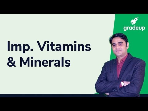 Important Vitamins And Minerals By Zubair Sir || State PCS Exams