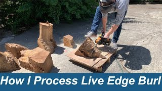 Processing Live Edge Burl for Resin Casting, Stabilizing, etc