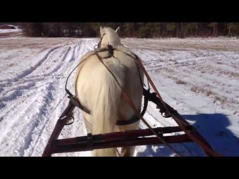 Sleigh Ride - Extended Cut