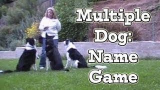 Multiple Dogs: Name Game