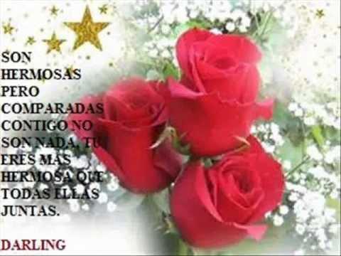Feliz 14 De Febrero Wmv Rosas Rojas Industria Del Amor