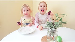 Vlog Семейство круглого стола - Senya Miro