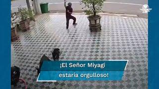 Con movimientos al estilo Karate Kid, hombre se enfrenta a un par de perros