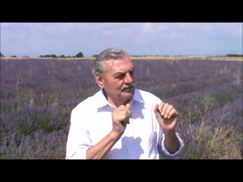 L'interview de Maurice Chaspoul - OVNI: Retour sur la rencontre du 3ème type de Valensole