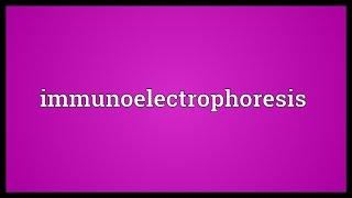 Immunoelectrophoresis Meaning