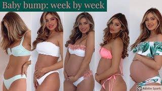 Pregnancy transformation // Belly week by week // Belle Lucia
