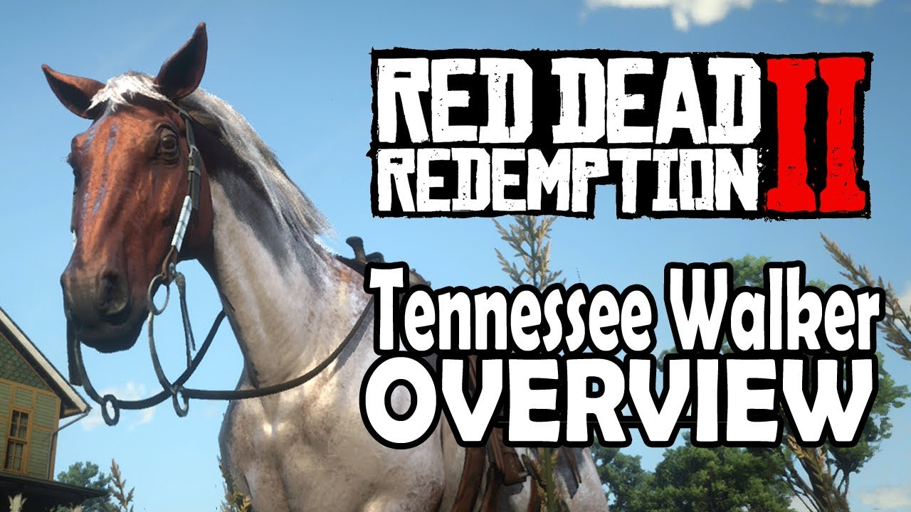 Red Dead Redemption 2 Horses - Tennessee Walker Overview by Daneliecasts
