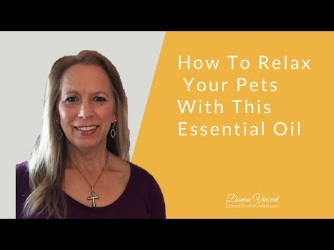 How To Relax Your Pets With This Essential Oil
