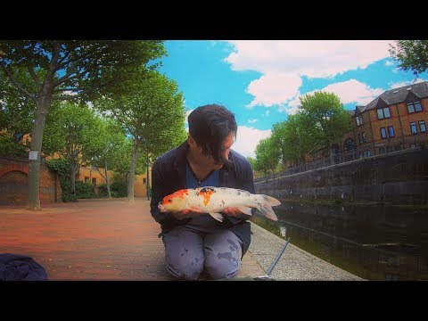 The London Carp NOBODY Thought Existed - Street Fishing The City Ft. Special Finds & Searches