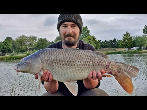 Carp Fishing At Milton Pool Fisheries