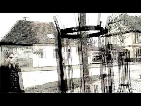 Kofein ft Velibor Nikolic (Brigand) - U Dan