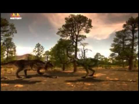 Tyrannosaurus Rex vs Nanotyrannus