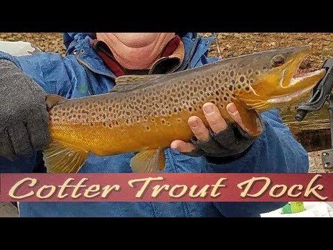 Arkansas White River Trout Fishing Report November 28, 2018