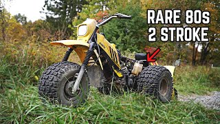We Bought TWO Yamaha 2 Stroke 3 Wheelers | Will they Run & Ride??