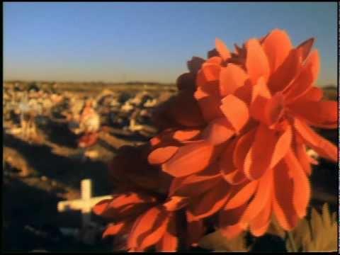 True Lives: Señorita Extraviada (Promo)