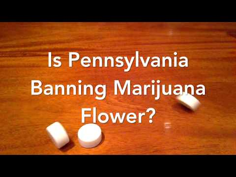 Is Pennsylvania Banning Pot? PA Marijuana Flower Information from Dr. Roman