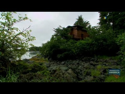 The Tree House | Buying Alaska