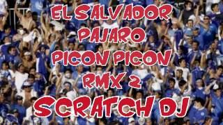 PAJARO PICON PICON RMX 2