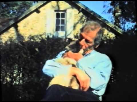 Le chat Tinou avec Gébé (1991) de Gérard Courant - Cinématou #6